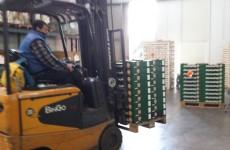 i bancali con le padelle MelaPiù vengono caricati col muletto sui camion per la consegna sui punti vendita