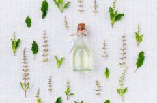 aroma_verde