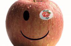 melapiu-smile